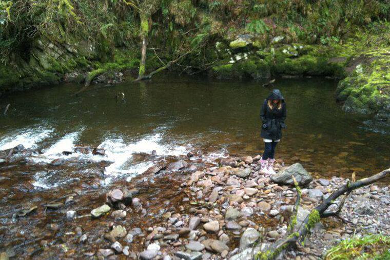 glenshelane-waterford